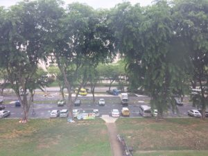 シンガポール ローカルな雰囲気の公園